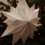 Einfacher Weihnachtsstern aus Butterbrottüten schnell gebastelt