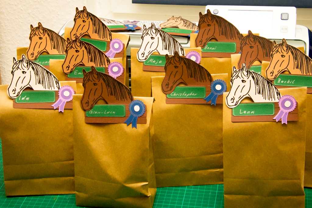 Gastgeschenk Pferdegeburtstag