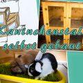 DIY - Kaninchenstall - aus Multiplex selbst gebaut